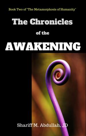 The Chronicles of the Awakening